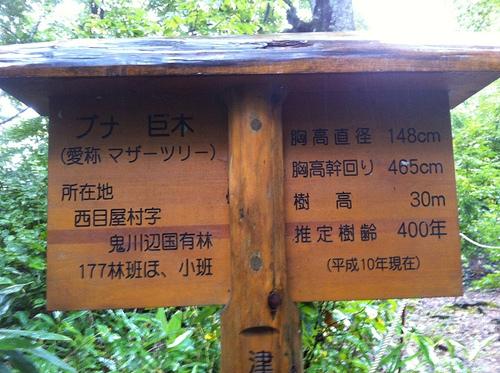 △登山日記[7]高倉森